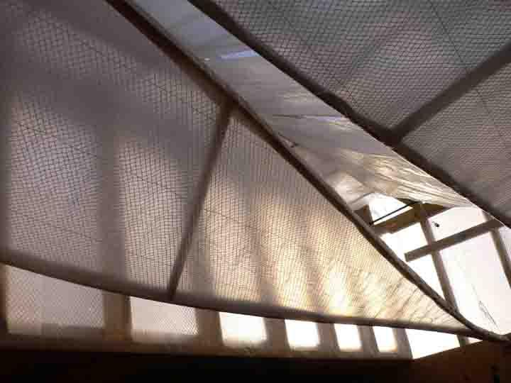 ceilingwings-corner-s