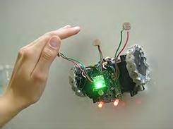 wallbots